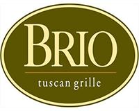 sponsor_block_template-brio